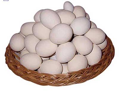 ovos deliciosos