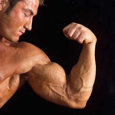 mais força para seu treino