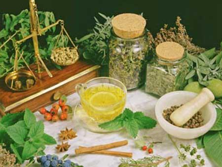 plantas medicinais para perder peso