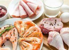Dieta à Base de Proteína